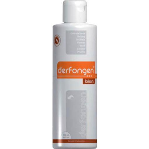 DERFONGEN - ARESTINES 250 ML