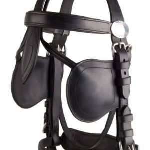 https://soloenganche.com/wp-content/uploads/2018/11/LeatherTech.Bridle.New_-510x780.jpg