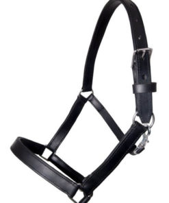 https://soloenganche.com/wp-content/uploads/2018/11/Shire.Headcollar.Leather.new_.-510x767.jpg